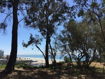 Sicht auf den Santa Monica Beach